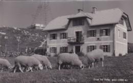 Dom Na Urslji Gori 1696 M - Prevalje * 30. VI. 1965 - Slovenia