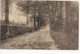 Deurle - Molendreve - Sint-Martens-Latem