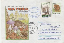 A139  HEDGEHOG,HERISON,MUSHROOMS, COVER STATIONERY 1998 ROMANIA. - Rodents