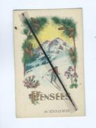 CPA  - Pensées De Sous Le Bois  (ski , Skieur ) - Unclassified