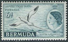 Bermuda 1953. Michel #148 MNH/Luxe. Visit The Royal Family 1953. Bird. (Ts04)