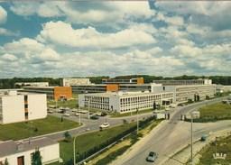 TOULOUSE RANGUEIL  LA CITE UNIVERSITAIRE(dil83) - Schools