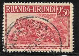 Ruanda-Urundi. Scott # 81 Used Leopard, 1942 - Ruanda-Urundi