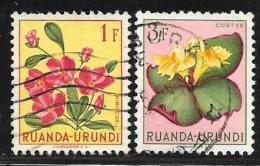 Ruanda-Urundi. Scott # 122,126 Used Flowers, 1953 - Ruanda-Urundi