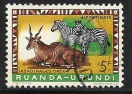 Ruanda-Urundi. Scott # 145 Used Animals, 1959 - Ruanda-Urundi
