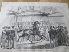 Gravure 1871  Vente Des Chevaux   Des Anciennes écuries Impériales  Au Palais Du Louvre  CHEVAL EQUITATION DE COURSE - Vieux Papiers