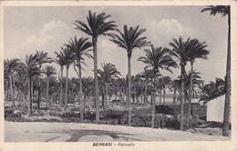 BENGASI - LIBIA  /   Palmeto _ Viaggiata 21.12.1940 - Libia