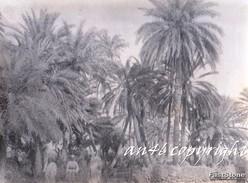 AFRICA_STORIA Del COLONIALISMO_FOTO_CARTOLINE REALI E ORIGINALI_LUOGHI_INDIGENI_SOLDATI_MEZZI_PERSONE-VEDI DESCRIZIONE - Libya