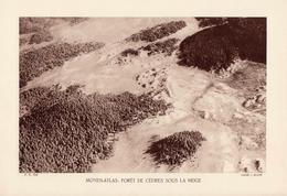 MAROC, MOYEN-ATLAS: FORÊT DE CEDRES SOUS LA NEIGE, Planche Densité = 200g, Format 20 X 29 Cm, (J. Blaché) - Géographie