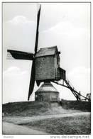 OELEGEM Bij Ranst (Antw.) - Molen/moulin - De Verdwenen Houten Standaardmolen, Opgezeild En In Werking - Ranst