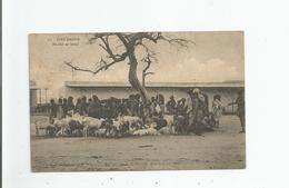 DIRE DAOUA 12 MARCHE AU BETAIL (BELLE ANIMATION) 1920 - Ethiopie