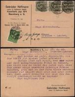 DR Postkarte, Gebrüder Hoffmann, Kammfabrik. NAUMBURG 10.2.1923 N. Dresden (Mi.187, 229). - Infla