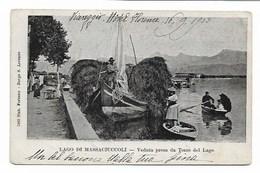 Lago Di Massaciuccoli - Veduta Presa Da Torre Del Lago. - Viareggio