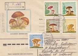 Russie - Année 1964 - Lettre/Champignons Divers - YT 2880/2884 - 1923-1991 URSS