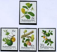 1991 - BOPHUTHATSWANA - Catg.. Mi. 257/260 -  NH - (I-SRA3207.14) - Bophuthatswana