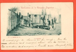 IAD-17  Costumbres De La Campana Argentina : La Marca. ANIME. USED In 1903 For France - Argentina
