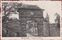 Bra Sur Lienne Lierneux Liege Luik L'entree Du Chateau Kasteel - Lierneux