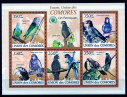 Comores, 2009, Birds, Parrots, Oiseaux, Perroquets, Fauna, Animals, Wildlife, MNH Sheet, Michel 2387-2391