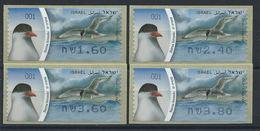 "Israël Distributeur N° 55** (MNH) 2010 - Oiseau ""Sterne Pierregarin"" - Franking Labels"