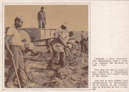 MOZAMBIQUE - Libertada A Terra, Reconstruimos Mocambique... - Mozambique