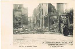 214 LEUVEN  Ruines Puinen - Leuven