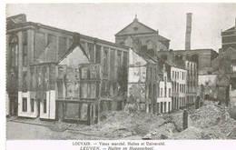 215 LEUVEN  Ruines Puinen - Leuven