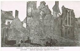 218 LEUVEN  Ruines Puinen - Leuven