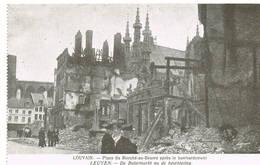 219 LEUVEN  Ruines Puinen - Leuven