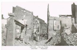 222 LEUVEN  Ruines Puinen - Leuven
