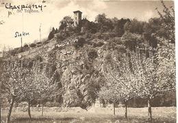 Schweiz, 2, 1923, St. Triphon Nach Bex, Siehe Scans! - Sin Clasificación