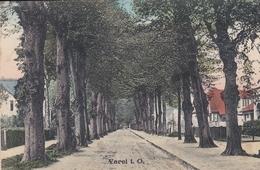 Varel Windallee 1917 Feldpostkarte - Varel