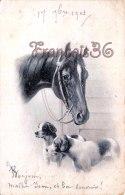 Illustration - Cheval Chevaux Horses Horse - Chiens Chien Dog Dogs - Ed. Nurnberg - Pferde