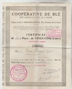 ACTION COOPERATIVE DE BLE AGRICULTEURS DE L'INDRE N°7627 + CARTE SYNDIQUE (vierge) - Actions & Titres