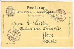 "ENTIER PTT - + CACHET LINEAIRE DE "" INTERLAKEN "" 16.11.96 - Interi Postali"