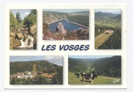 88-VOGES--MULTIVUES  --RECTO/VERSO-C76 - France