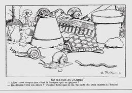 CPM Carte Moderne Tortue Turtle Escargot Champignon Non Circulé - Schildpadden