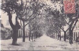 MASSA / VIALE XX SETTEMBRE /CIRC 1918 - Massa