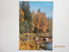 Postcard Unknown Forest Location But Postally Used At Kaamanen Lapland Finland Suomi 1967 My Ref B2305 - Finland