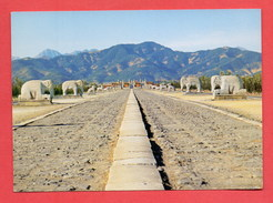 (165) China Un-used Postcard