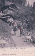 Val D'Illiez, Paysannes à Dos De Mulets Et Chèvres, Foulards Rouges (3089) - VS Valais