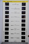 LESTRADE :  418  BRETAGNE :PARDON DE STE-ANNE D'AURAY - Stereoscopi