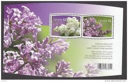 Canada, 2007, Fleurs, Lilas, Flowers, Lilac