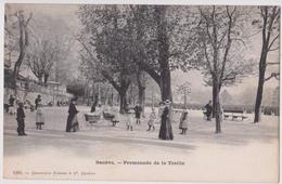 GENEVE - PROMENADE DE LA TREILLE - N° 1301 - GE Genève