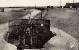 DPT 14 COURSEULLES Un Canon - Courseulles-sur-Mer