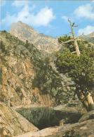 Postal 040852 : Pirineos De Lerida. El Pallars. Valle De Espot. Estany Trullo - Postales