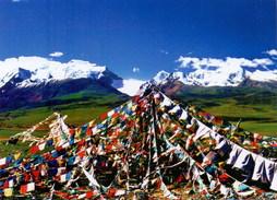 (247) Tibet Un-used Postcard