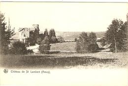 AMAY  ---  Château De St  Lambert - Amay
