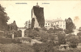 OUPEYE - HERSTAL   ---  Le Château - Oupeye