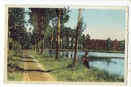 38545 BRAY SUR SOMME Chemin Des Marais - Bray Sur Somme