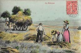 Scène De La Vie Aux Champs: La Moisson - Illustration - Landbouw